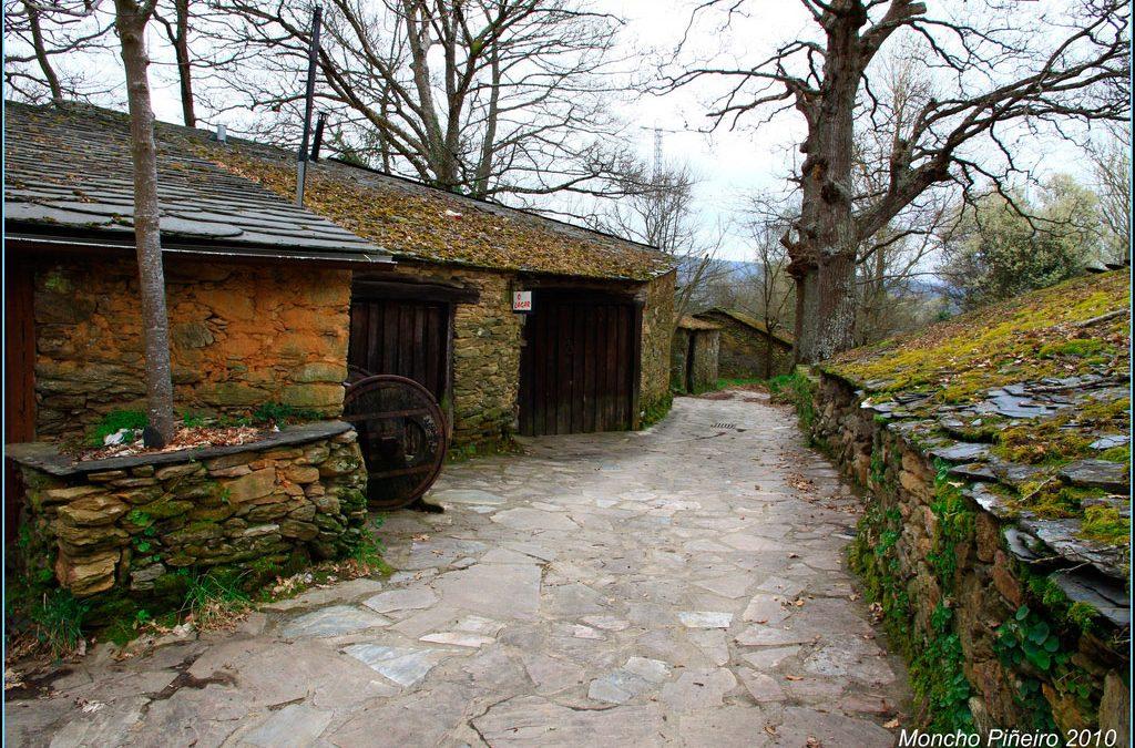 Historia de la viticultura en Vilachá de Salvadur